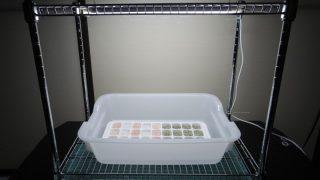 LED水耕栽培の手作り