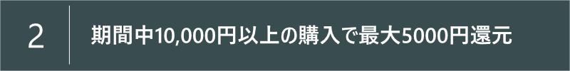 サイバーマンデーには5000円分のポイント還元